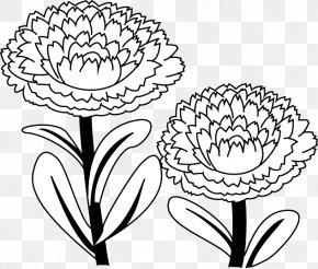 Flower - Floral Design Calendula Officinalis Coloring Book Drawing PNG