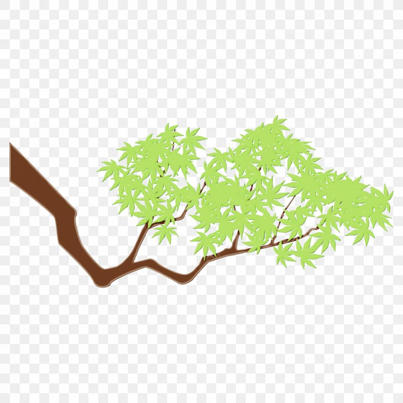 Branch Green Leaf Tree Plant, PNG, 1200x1200px, Watercolor, Branch, Green, Leaf, Paint Download Free