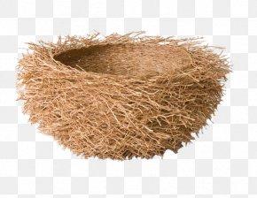 Bird's Nest - Beijing National Stadium Edible Birds Nest PNG