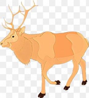 Moose Antler - Reindeer PNG