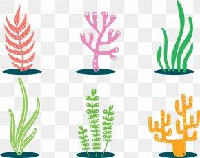 Colorful Plants - Coral Clip Art PNG