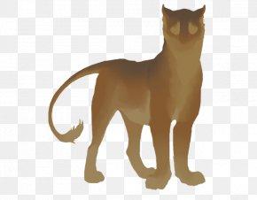 Lion - Whiskers Lion Cat Tiger Dog PNG
