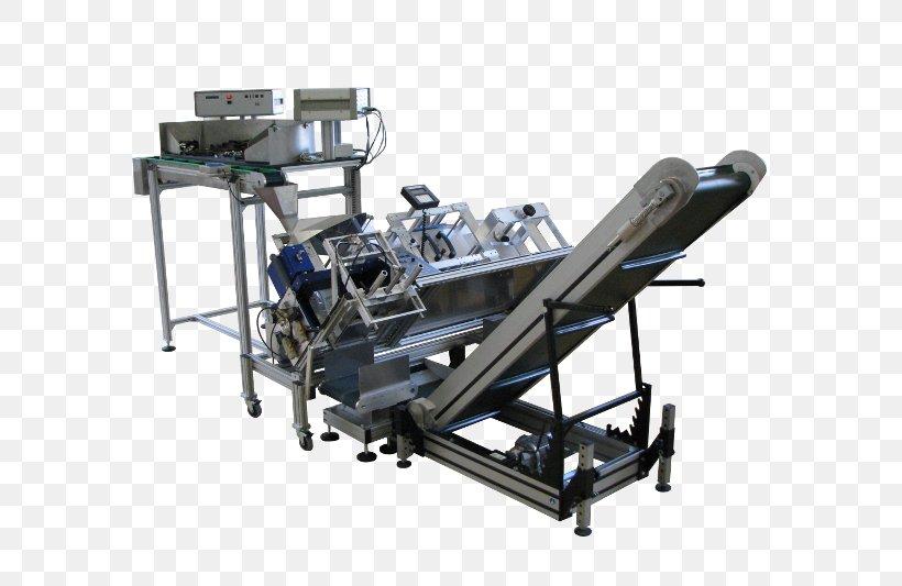 Machine Conveyor System Conveyor Belt Label Horizontale, PNG, 800x533px, Machine, Belt, Conveyor Belt, Conveyor System, Horizontale Download Free