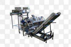 Conveyor System - Machine Conveyor System Conveyor Belt Label Horizontale PNG