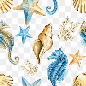 Shading Angry Sea - Seahorse Shellfish PNG