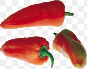 Pepper Image - Black Pepper Chili Pepper Bell Pepper Cayenne Pepper PNG