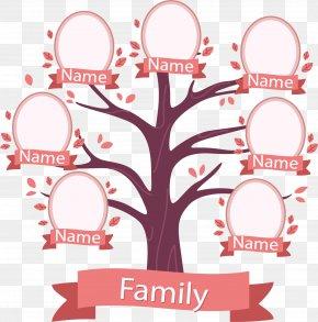 Peach Tree Tree Genealogy - Family Tree Illustration PNG