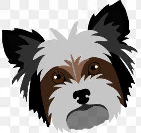 Cute Shih Tzu - Yorkshire Terrier Cairn Terrier Puppy Shih Tzu Dog Breed PNG