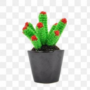 Potted Cactus - Cactaceae Euclidean Vector Plant Flowerpot PNG