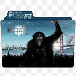 Planet Of The Apes - YouTube Rise Of The Planet Of The Apes Film Dawn Of The Planet Of The Apes PNG