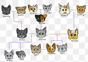 Leopards - Felidae Leopard Cat Tiger Family Tree PNG