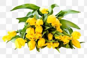 Yellow Background - Flower Bouquet Tulip Desktop Wallpaper Yellow PNG