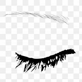 Black Ink Eyebrow Eyebrow Eyebrow Vector Material - Eyebrow Euclidean Vector PNG