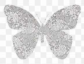 Lace Butterfly - Lace Paper Butterfly Textile PNG