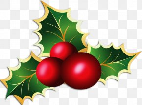 Christmas - Mistletoe Phoradendron Tomentosum Candy Cane Clip Art PNG