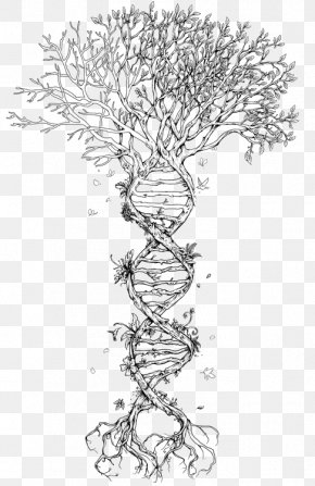 Watercolor Colorful Tree Of Life - The Double Helix: A Personal Account Of The Discovery Of The Structure Of DNA Tree Nucleic Acid Double Helix Genetics PNG