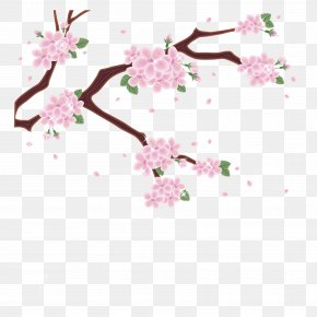 Vector Japanese Pink Cherry Blossom - Mount Fuji Cherry Blossom Photography Clip Art PNG