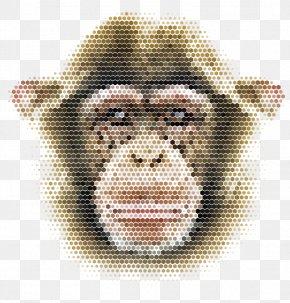 Vector Mosaic Monkey - Chimpanzee Monkey Shape Illustration PNG