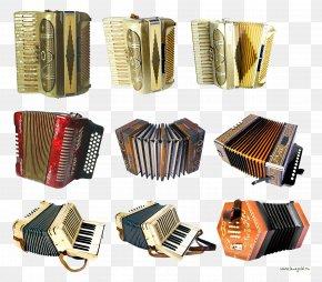 Accordion - Diatonic Button Accordion Garmon Musical Instruments PNG