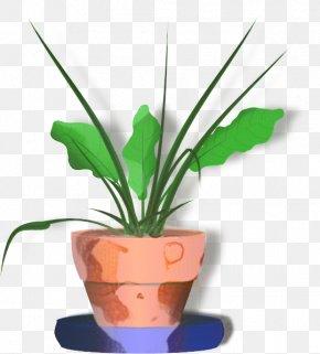 Flowerpot Houseplant Clip Art Plants PNG