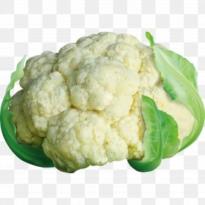 Ultra-realistic Material Cabbage - Cauliflower Cabbage Brussels Sprout Broccoli PNG