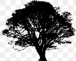 Black Trees Cliparts - Tree Silhouette Oak Clip Art PNG