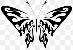 Butterfly - Butterfly Art Drawing Photography Clip Art PNG