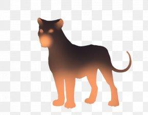 Lion - Lion Whiskers Tiger Cat Dog Breed PNG