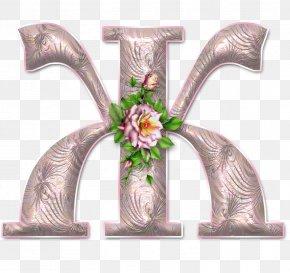 D - Letter Alphabet Character Script Typeface Font PNG