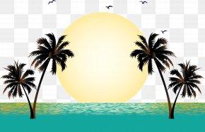 Sunset Sunset Vector - Summer Vacation Beach PNG
