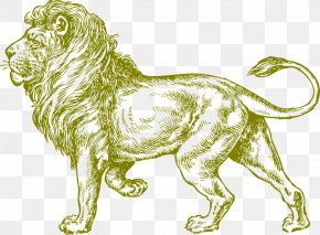 Lion,animal,wild Animals - White Lion Drawing Black And White Clip Art PNG