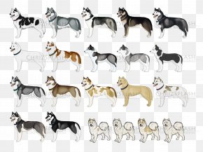 Dog - Dog Breed Non-sporting Group Snout PNG