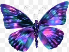 Cool Butterfly - Butterfly Butterflies In Colour Insect Paper Color PNG