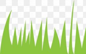 Energy - Logo Desktop Wallpaper Grasses Energy Font PNG