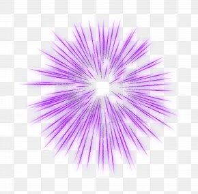 Firework Purple Transparent Clip Art Image - Fireworks PNG