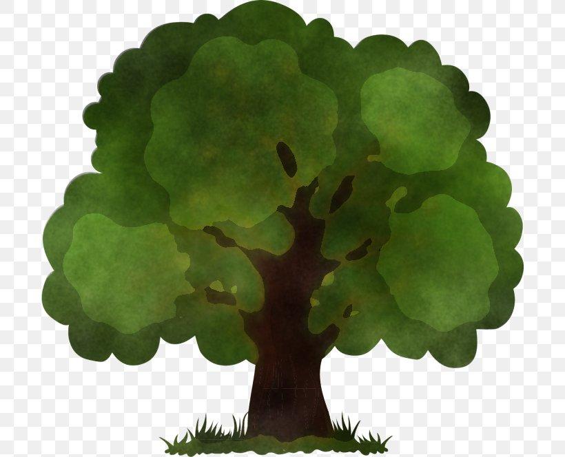 Green Leaf Plant Flower Tree, PNG, 700x664px, Green, Annual Plant, Aquarium Decor, Flower, Flowerpot Download Free