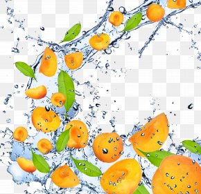 Mango - Fruit Apricot High-definition Television 1080p Wallpaper PNG