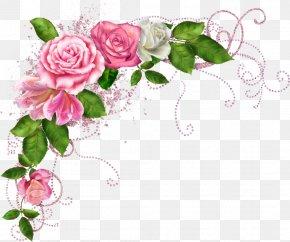 Flower Border - Flower Picture Frames Clip Art PNG