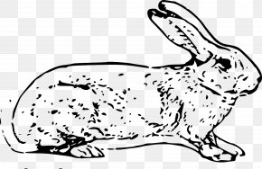 White Spots Bunny - White Rabbit Easter Bunny Hare Domestic Rabbit Clip Art PNG