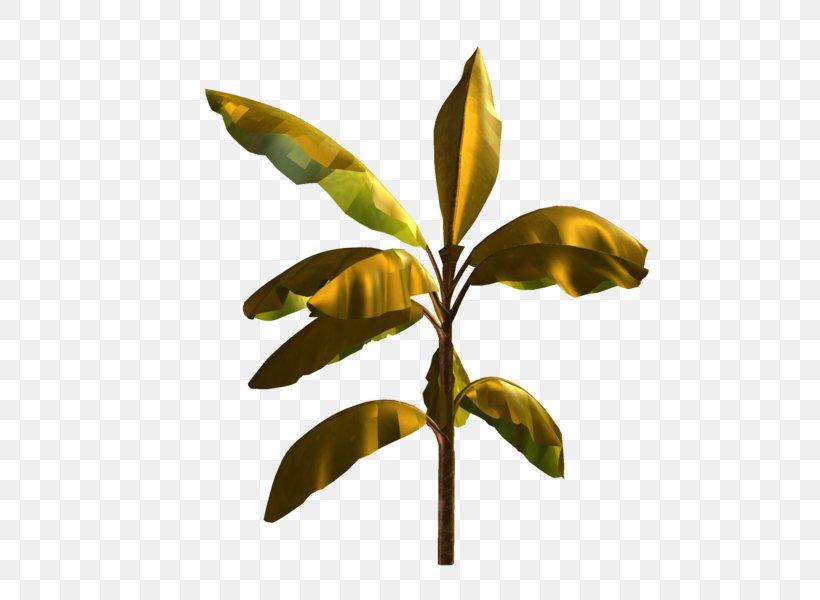 Leaf Plant Flower Tree Woody Plant, PNG, 510x600px, Leaf, Flower, Plant, Plant Stem, Tree Download Free