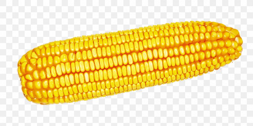 Corn On The Cob Maize Harvest Computer File, PNG, 1000x500px, Corn On The Cob, Commodity, Corn Kernels, Corncob, Gratis Download Free
