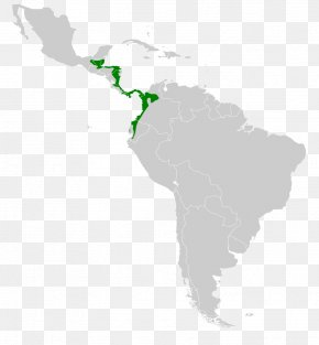 United States - Latin America United States Central America Southern Cone The Guianas PNG