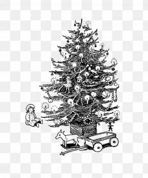 Christmas Tree - Christmas Tree Spruce Christmas Ornament Christmas Day Fir PNG