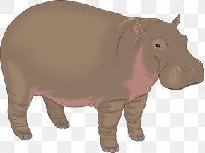 Hippo - Hippopotamus Cartoon Clip Art PNG