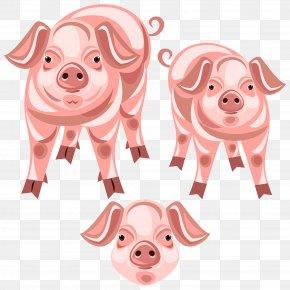 Pig - Pig Snout Clip Art PNG
