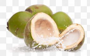 Fresh Coconut Water - Coconut Water Juice Sports & Energy Drinks Smoothie PNG