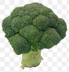 Broccoli - Broccoli Cauliflower Collard Greens Rapini PNG