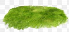 Green Grass - Grass Clip Art PNG