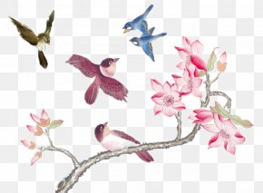 China Plover - China U5b66u56fdu753b Chinese Painting Bird-and-flower Painting PNG