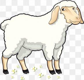 Vector Cartoon Sheep - Sheep Goat Clip Art PNG